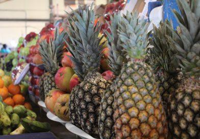 Pesquisa comparativa de preços de hortifruti contempla 47 produtos